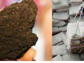 [KT] Than sinh học – nguyên liệu hoàn hảo để sản xuất xi măng