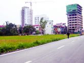 Nhà nước nên trưng mua thay vì thu hồi đất