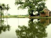 Kiến trúc nông thôn xưa, nay: trách nhiệm và những hành động...
